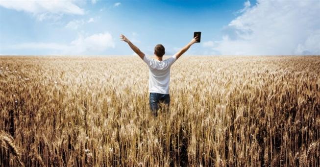 12849-man-bible-preach-field-wheat-sky-arms.800w.tn